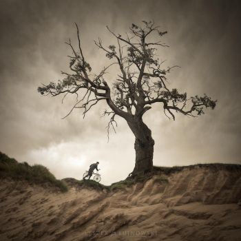 On the Edge II by Alshain4