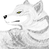 first ever PS drawing - Wolf by haseodragon