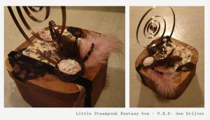 Little Steampunk Fantasy box by LoneSpiritWolf