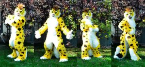 Yellow the Leopard by temperance