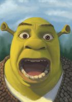 Shrek by T-Mildner