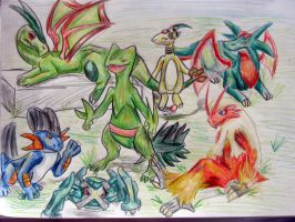 My pokemon team by Balsamo
