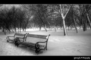alone in winter by Iulian-dA-gallery