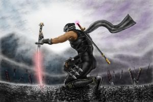 ryu hayabusa (lets try again) by artdragon88