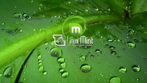 Linux Mint Debian wallpapers by nacsasoft