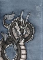 The Ying Yang Dragon... by Tascun