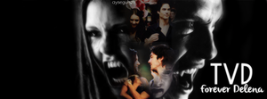 Tvd ( Delena ) Facebook Cover by NiklausAysegulSS