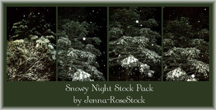 Snowy Night Stock Pack by Jenna-RoseStock