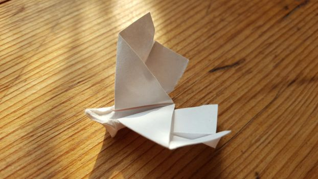 Origami: Simple Butterfly by p4ndor4TheBox