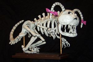 Farah Fossil 88b by thepapierboy