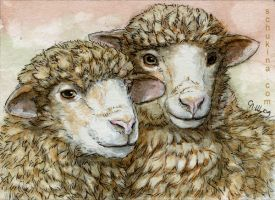 ACEO Sheeps by sschukina