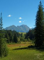 Wasenmoos, Pass Thurn, Austria by Cundrie-la-Surziere