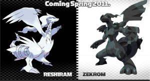 Zekrom and Reshiram by Dark-pollution