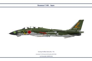 Fantasy 176 F-14A Japan by WS-Clave