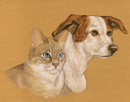 2009 commission -- cat and dog by Uzuri