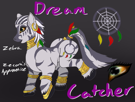 Dream Catcher by BlindCoyote