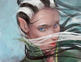 Present:Elven Rose by Anixien