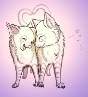Cat love :. by SemiFloating
