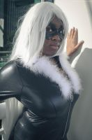 Black Cat - Too Cool by seethroughcrew