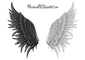 ANGEL_wings 001 by Marioara08