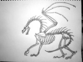 Skeleton Dragon by TheOddGod