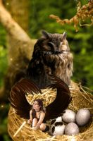 The Owl Child Revision by DanikaMilles