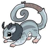 [CUSTOM] Sugar Glider Design by Ayinai