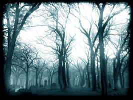 To Rain In Droves by intao