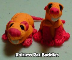 Hairless Rat Buddies by psychokatz
