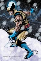 Wolvie in the snow by RossHughes
