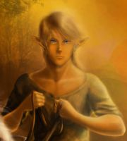 Link - Portrait of a Hero by SageFeathers