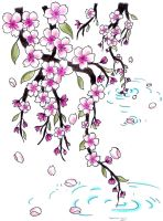 Cherry Blossoms for Jen by Jen-van