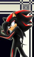 Shadow the hedgehog by Taleea