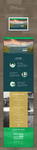 leading and coaching web design concept by HackerD