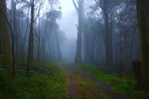 Mt Macedon 02 by Braunaudio
