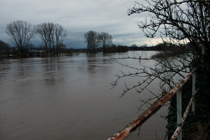 Seligenstadt Flood Panoramic by mifuno
