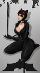 Catwoman by NinjaPony