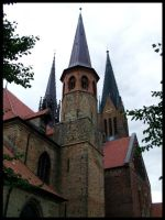 Schleswiger Dom by steamed