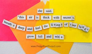 The Daily Magnet #190 by FridgePoetProject