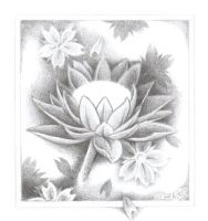 Lotus flower 3 by tatosXL