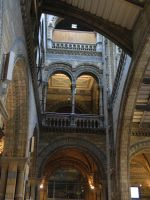 Natural History Museum, London by LadyAcceber