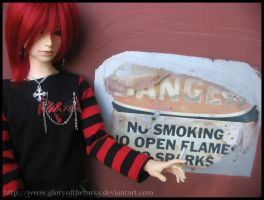 NO SMOKING by the-grinning-fox
