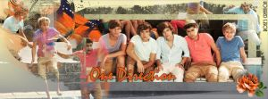 Timeline Facebook #39 - One Direction by dreamswoman