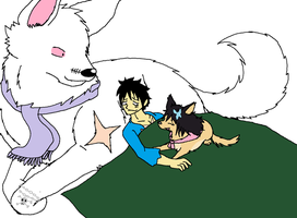 OP: Luffy, Blizzard, and Aika by XfangheartX