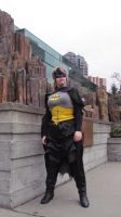 I am the Batman by SubRosa-undertherose
