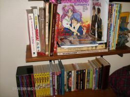 Bookcase and its contents by XxoOjunefoxOoxX