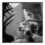 2015-030 Peaceable kingdom by pearwood