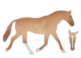 Foal Design for Flockey by michelle222