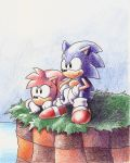 Sonic and Amy Rose by adamis