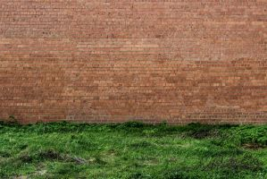 Grass And Wall by RaeymaekersP